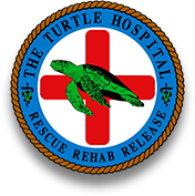 The Turtle Hospital. Rescue, Rehab, Release.